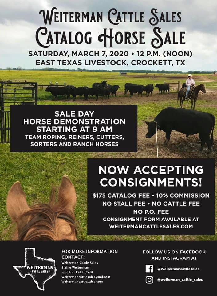Catalog Horse Sale March 7 Switzer Land And Auction